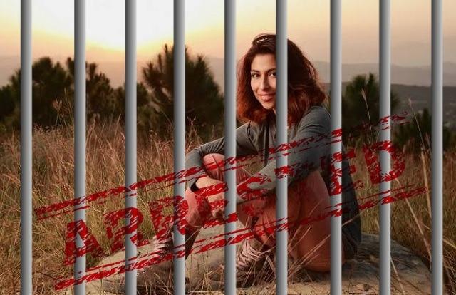 Meesha Shafi Sent to Jail